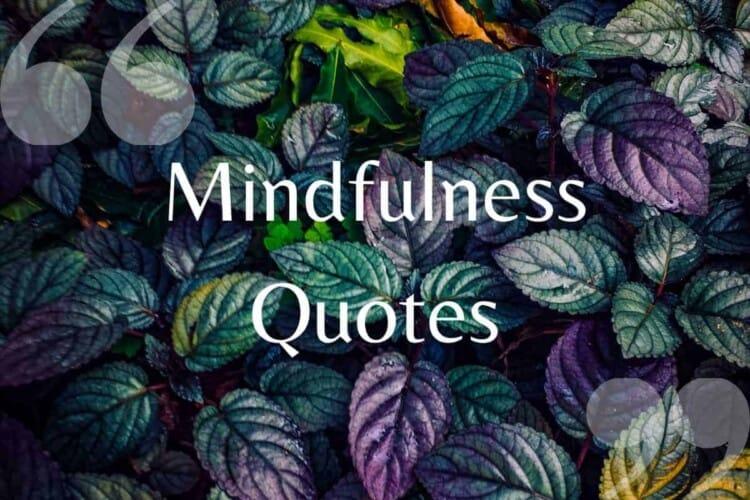 mindfulness qoutes